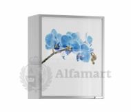 Анна АП-60 полка с витриной Орхидея синяя